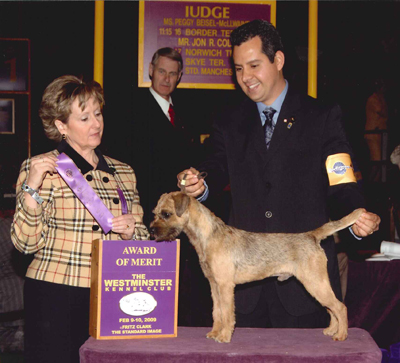 Newman Westminster Kennel Club Merit Award